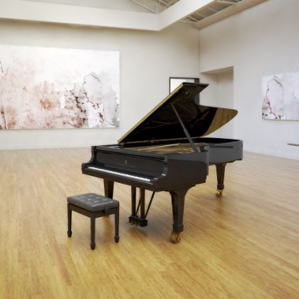 http://www.steinway.com/pianos/steinway/grand/model-d